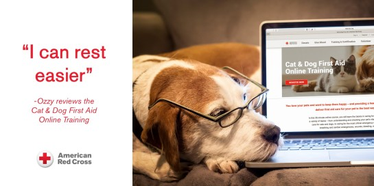 Ozzy the dog shares his review of the Red Cross' Cat and Dog First Aid Training.